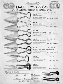 Advertisement for Ball Brothers and Co solid steel sheep shears, Globe Works, Penistone Road, etc