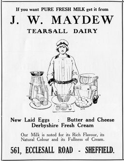 Advertisement for Tearsall Dairy, 561 Ecclesall Road