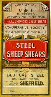 Advertisement for Trades Unionists' Sheep Shear Co-operative Society steel sheep shears